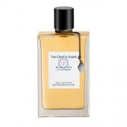 Van Cleef & Arpels Bois d'Iris eau de parfum 75ML spray vapo