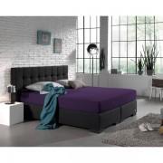 Homecare Hoeslaken Dubbel Jersey 220 gr. Purple Paars 140 x 200/220