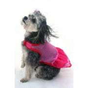 Diva Doggy Dress