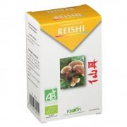 Redon® Reishi Bio 60 pc(s) 3401553709254