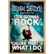 It's Gonna Rock...'Cause Thats What I Do [DVD]