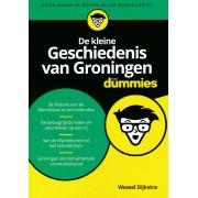 Reisgids De kleine geschiedenis van Groningen voor Dummies   BBNC