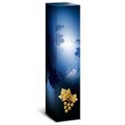 Cutie carton albastra Mystik