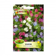 Seminte flori, Florian, Echium, 0.5 g