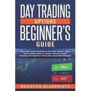 Day Trading Options Beginners Guide: The Playbook Crash Course to the Stock Market. Learn How to Make Money to Create a Passive Income Investing and T, Paperback/Brandon Blueprints