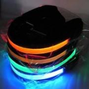 LED halsband till hunden - M, Röd