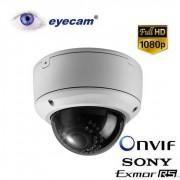 Camera IP Megapixel Eyecam EC-1101 - Full HD 1080P Varifocala