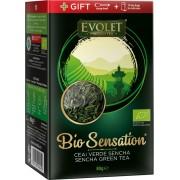 Ceai Bio Sensation Verde Sencha, 80g, Vedda