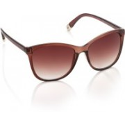 Farenheit Over-sized Sunglasses(Brown)