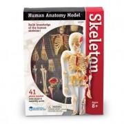 Set educativ pentru copii Learning Resources - Corpul uman - Sistemul osos - 41 piese