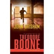 Theodore Boone. Acuzatul