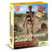 Geoworld Cave Girl Excavation Kit- Australopithecus Afarensis Skeleton