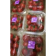 売場チョイス とってもトマト(スマイルトマト約1.2キロ)