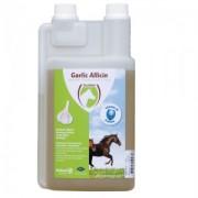 Excellent Garlic Allicin Liquid - 1L