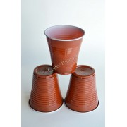 Pahar Plastic 6oz FLO 100buc
