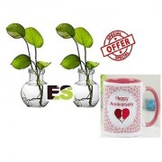 ES WATER MONEY PLANT PAIR With Gift Anniversary Gift Mug