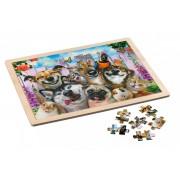 Puzzle in cadru de lemn 48 piese Pet