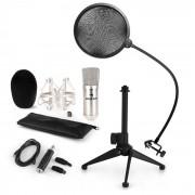 CM001S Set Microfono V2 Microfono a Condensatore Adattatore USB Stativo argento