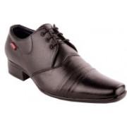 Zebra Light Lace Up Shoes For Men(Black)