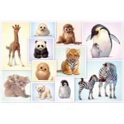 Puzzle Schmidt - Wild Animal Babies, 200 piese (56270)