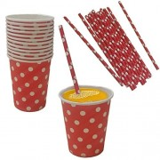 Red And White Polka Dot Paper Cup And Straw Set Pack Of 24 Includes 12 Cups And 12 Straws. Great For Parties!!