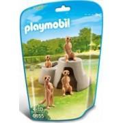 MANGUSTE Playmobil