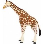 Figurina Girafa Adulta Mojo