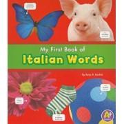 My First Book of Italian Words, Paperback/Katy R. Kudela