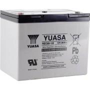 Acumulator plumb AGM 12 V, 80 Ah, (l x I x A) 259 x 212 x 168 mm, Yuasa YUAREC8012