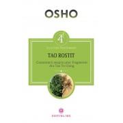 TAO ROSTIT. Comentarii asupra unor fragmente din Tao Te Ching