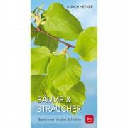 Bäume und Sträucher - Hecker, Ulrich - Sachbuch - BLV Buchverlag