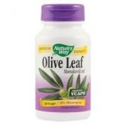 Olive leaf standardized 60cps NATURES WAY