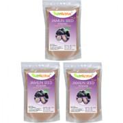 Jamun Seed Powder 100 Natural Jamun Guthli Powder pack of 3(100 gm each)