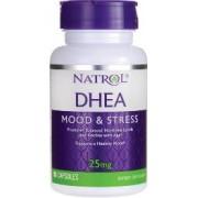 vitanatural dhea natrol 25 mg 300 comprimés