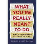 What You're Really Meant to Do: A Road Map for Reaching Your Unique Potential, Hardcover