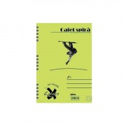 Caiet Pigna Basic, A5, cu spira, 50 file, dictando