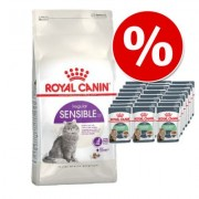4 kg Royal Canin + 24 x 85 g Royal Canin in Saus Kattenvoer - British Shorthair Adult + Intense Beauty in Saus