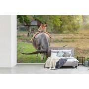 Fotobehang vinyl - Twee jongens op de Ipad op een buffel breedte 390 cm x hoogte 260 cm - Foto print op behang (in 7 formaten beschikbaar)