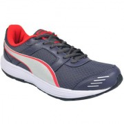 Puma Puma harbour dp blue sport shoes Sports Shoe (18931302)