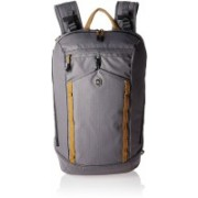 Victorinox Altmont Active Compact 14 L Laptop Backpack(Grey)