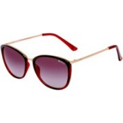 ENRICO Over-sized Sunglasses(Pink)