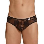 Candyman Lace & Mesh Cheeky Bikini Underwear Black 99385