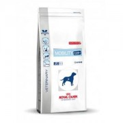 Royal Canin Veterinary Diet Mobility pour Chien 2 x 2 kg