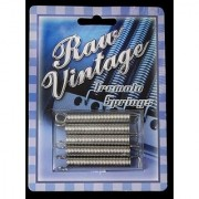 Raw Vintage Electric Guitar Replacement Tremolo Springs Set of 5