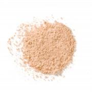 Elisabeth Arden High Performance Blurring Loose Powder 17.5g (Various Shades) - Light 02