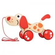 New Walk-A-Long Puppy