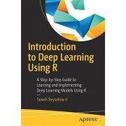 Introduction to Deep Learning Using R: A Step-By-Step Guide to Learning and Implementing Deep Learning Models Using R, Paperback/Taweh Beysolow II