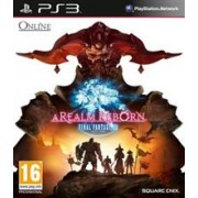 Final Fantasy XIV A Realm Reborn Ps3