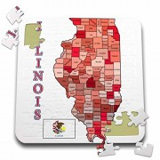 777images Flags and Maps - States - Flag and Map of the State of Illinois, counties colored and named - 10x10 Inch Puzzle (pzl_184175_2)