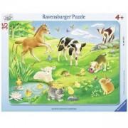 Детски пъзел 35 части - Животни на поляната - Ravensburger, 7006119